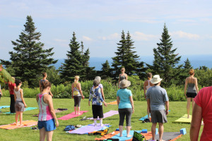 Yoga Functions On The Buller River