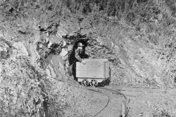 West Coast Mining