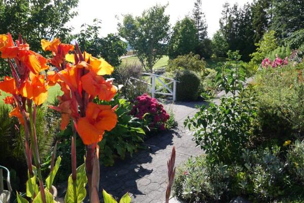 Beautiful-Garden-Retreat